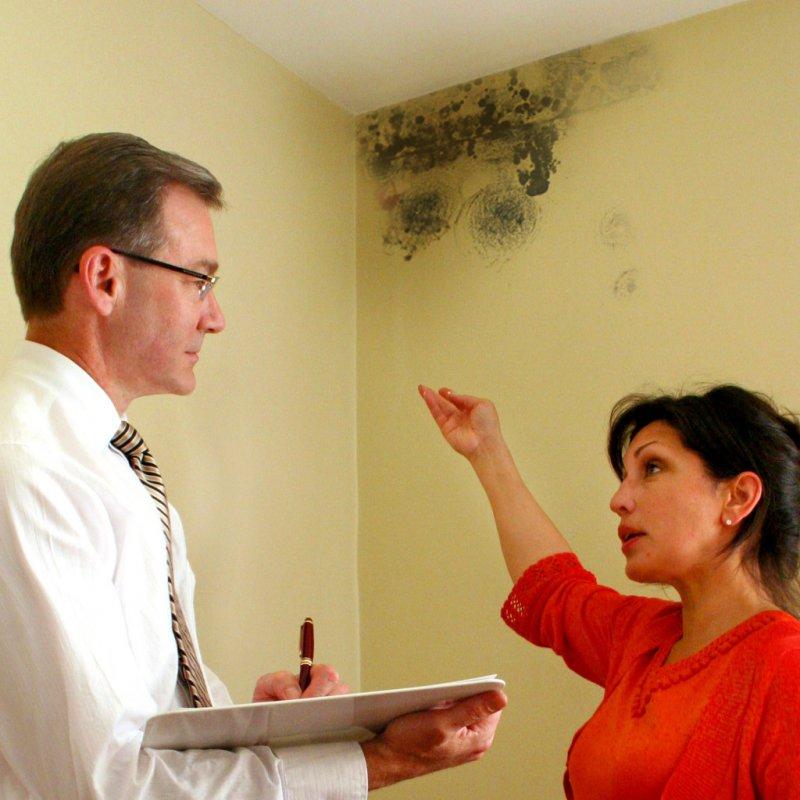 Эффективное средство от плесени на стенах квартиры
